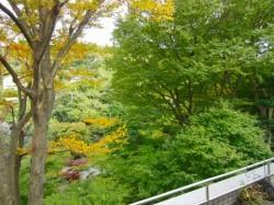 北鎌倉貸家の景観